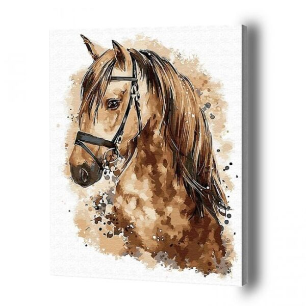 Horse Paint By Number