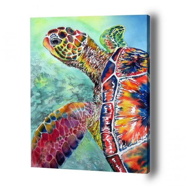 Buy-Sea-Turtle