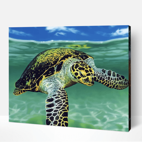 Grandpa Jay The Turtle Paint By Number
