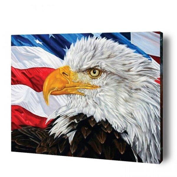 American Eagle Paint By Number