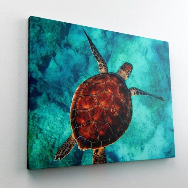 Swimming Sea Turtle Paint By Number Kit